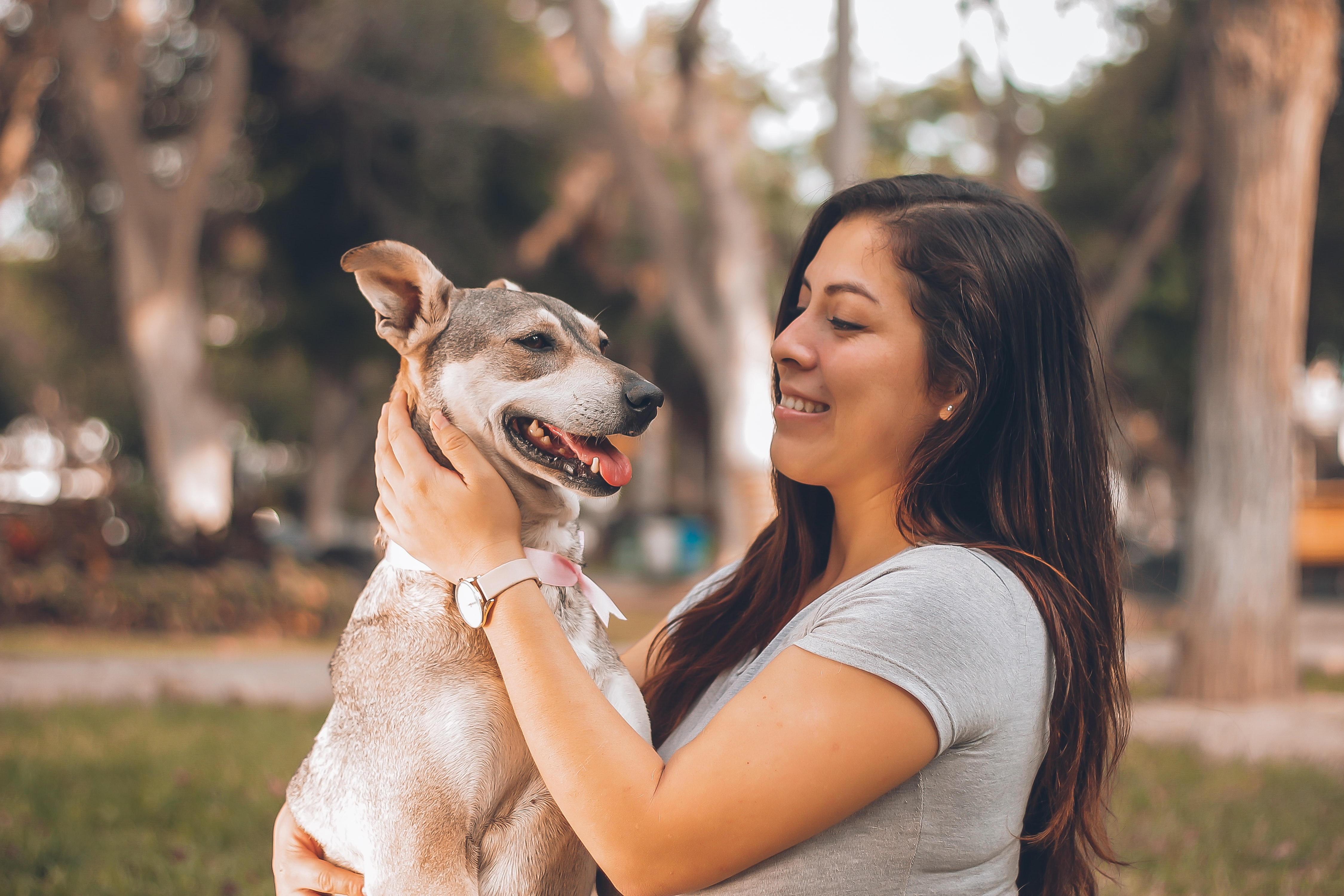 woman-holding-dog benefit from an animal hospital management system